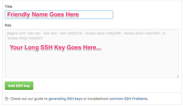 Add SSH Key to Github